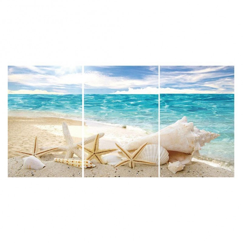 3pcs Beach Shell - F...